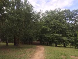 axeitos parque