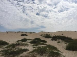 Gran duna cerca
