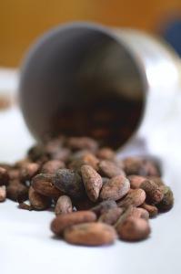 Granos Cacao